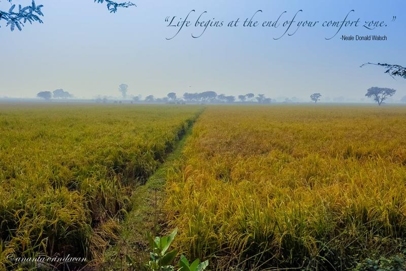 Vrindavan - Life Beyond the Comfort Sone